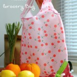 DIY Strawberry Reusable Grocery Bag