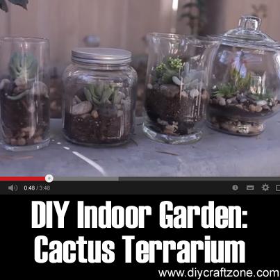 DIY Indoor Garden - Cactus Terrarium