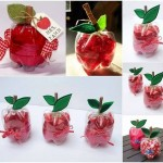 Recycle Plastic Bottles & Make Super Cute Apple Shaped Boxes!